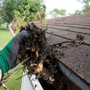 Gutter Cleaning Service in Cleveland Ohio