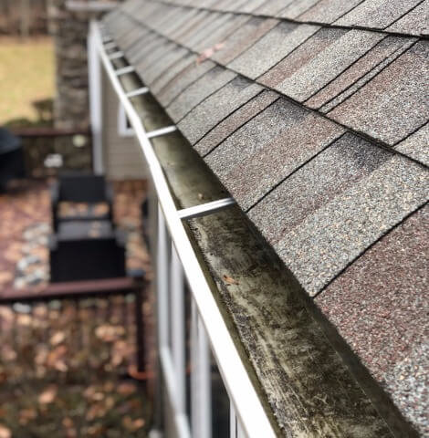 Professional Gutter Cleaning Services in Cleveland Ohio